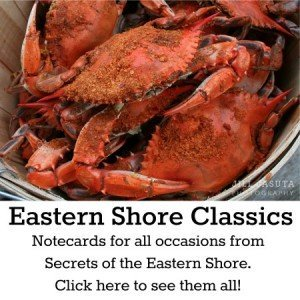 Eastern Shore Classics: Notecards by Secrets of the Eastern Shore