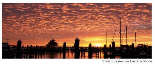 Eastern Shore Sunrise Greeting Card