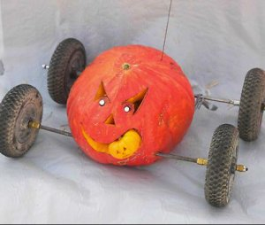 Great Pumpkin Race Entry in Ocean City on the Eastern Shore of Maryland