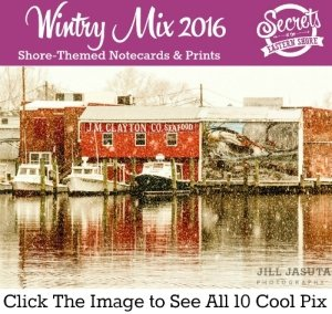 Wintry Mix of Notecards and Prints from the Eastern Shore of Maryland and Virginia