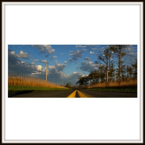 Elliotts Island Road Panoramic Photo Print