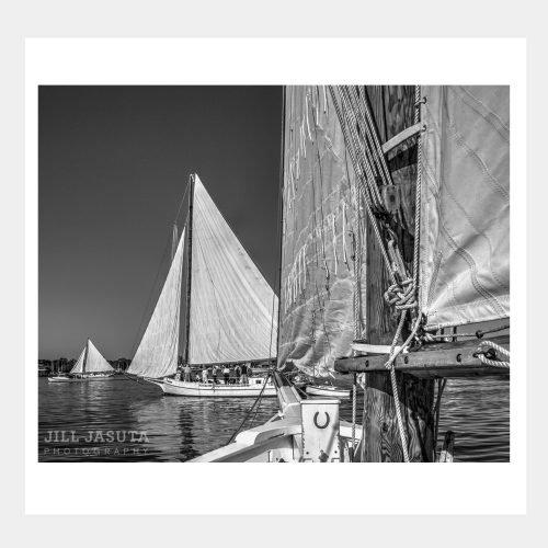 Skipjack Races