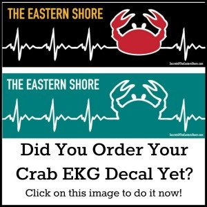 The Crab EKG Decal from Secrets of the Eastern Shore
