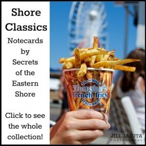 Shore Classics Greeting Cards by Secrets of the Eastern Shore: Thrashers