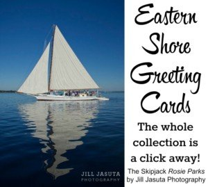 Eastern Shore Greeting Cards