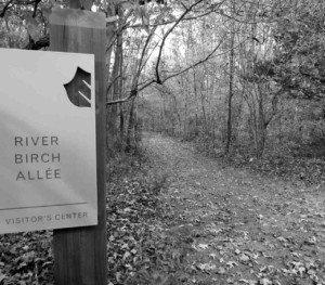 Trail at Adkins Arboretum
