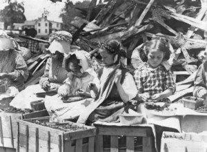 Kids Hulling Strawberries in Delaware 1911