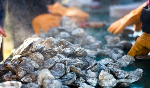Oyster Festivals and Events on Delmarva 2017