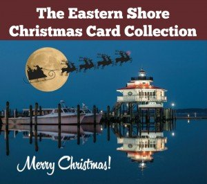 Eastern Shore Christmas Cards