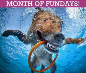 Month of Fundays on Delmarva