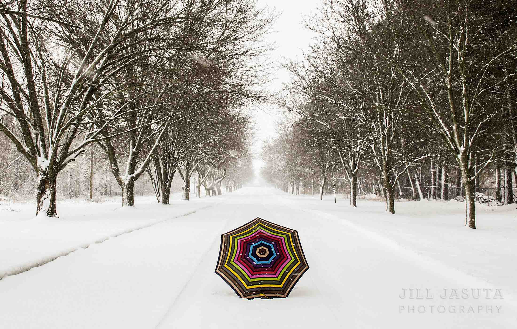 Umbrella in the Snow
