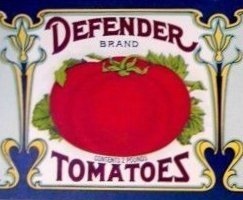 Defender Tomatoes from Trappe, Md.