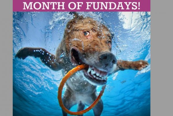 Month of Fundays Happy Dog Featured Photo
