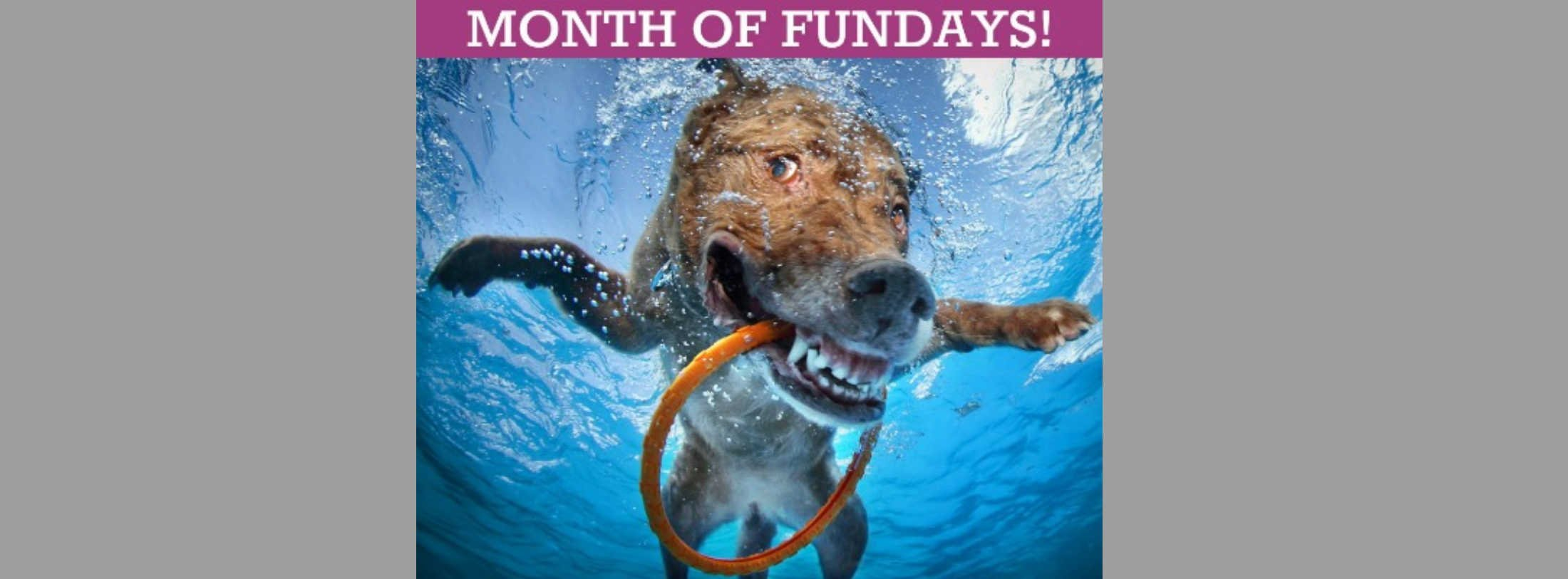 Month of Fundays March 2020: Good Times & Fun Events on the Eastern Shore and in Delaware