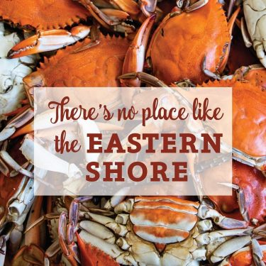 Eastern Shore Crabs Canvas Block