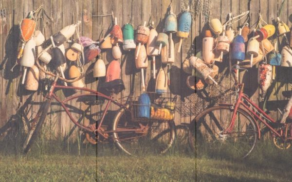 Panoramic Bikes and Buoys on Wood