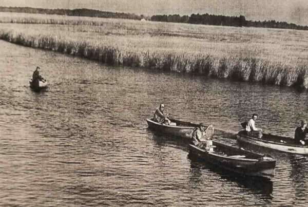 Muskrat Trappers Headed to Marsh in 1954
