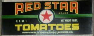 Red Star Tomato Can by Eastern Shore of Virginia Produce Exchange