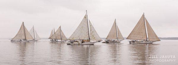 A Gathering of Skipjacks Panoramic Photo Product Photo