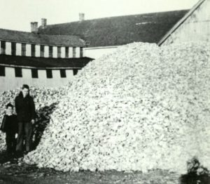 Two Children with Oyster Shell Pile at Coulbourne and Jewett circa 1950